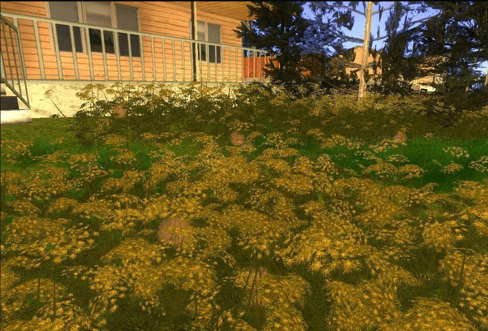 rastitelnost-008-min